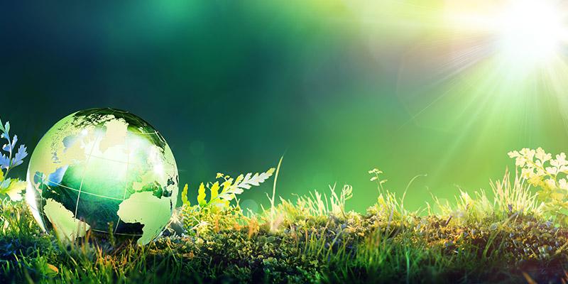 L'utilizzo dei purificatori d'acqua diminuisce l'utilizzo della plastca e favorisce un miglioramento ambientale